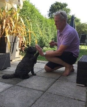 Dog wakes owner from medically induced coma